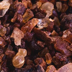 Analyse resine parfums Opoponax